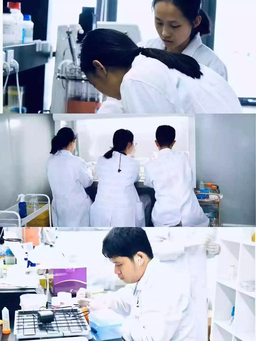 捷报频传!深国交校队摘得2019 iGEM(国际基因工程机器大赛)金牌
