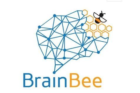 2020年Brain Bee脑科学大赛地区赛|深国交获奖人数为广东赛区之最