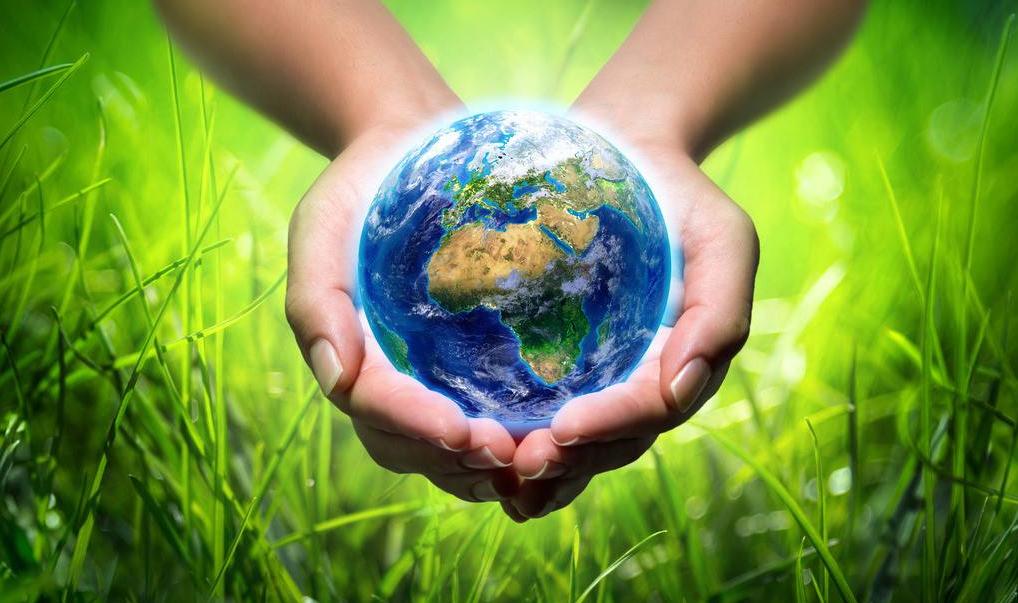 世界地球日| 我们能为地球做些什么? -- 深国交给学子们的6点建议