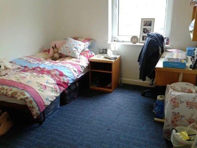 不P图也不开滤镜,看看英国大学宿舍里的真实颜值(第二季)  英国留学 第21张