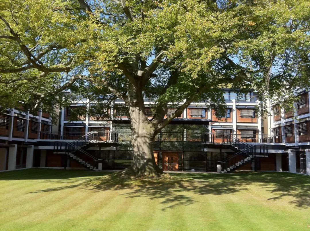 不P图也不开滤镜,看看英国大学宿舍里的真实颜值(第二季)  英国留学 第39张
