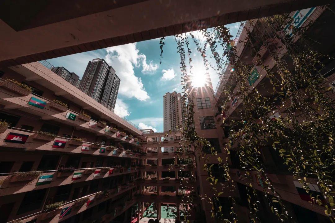深国交高中部校区在水围村最后的时光 -- 以7天时间,告别17年  深国交 深圳国际交流学院 第3张