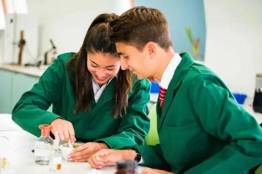 USNews 2019年全球教育最佳国家排行榜 -- 英国排行首位  数据 排名 第5张