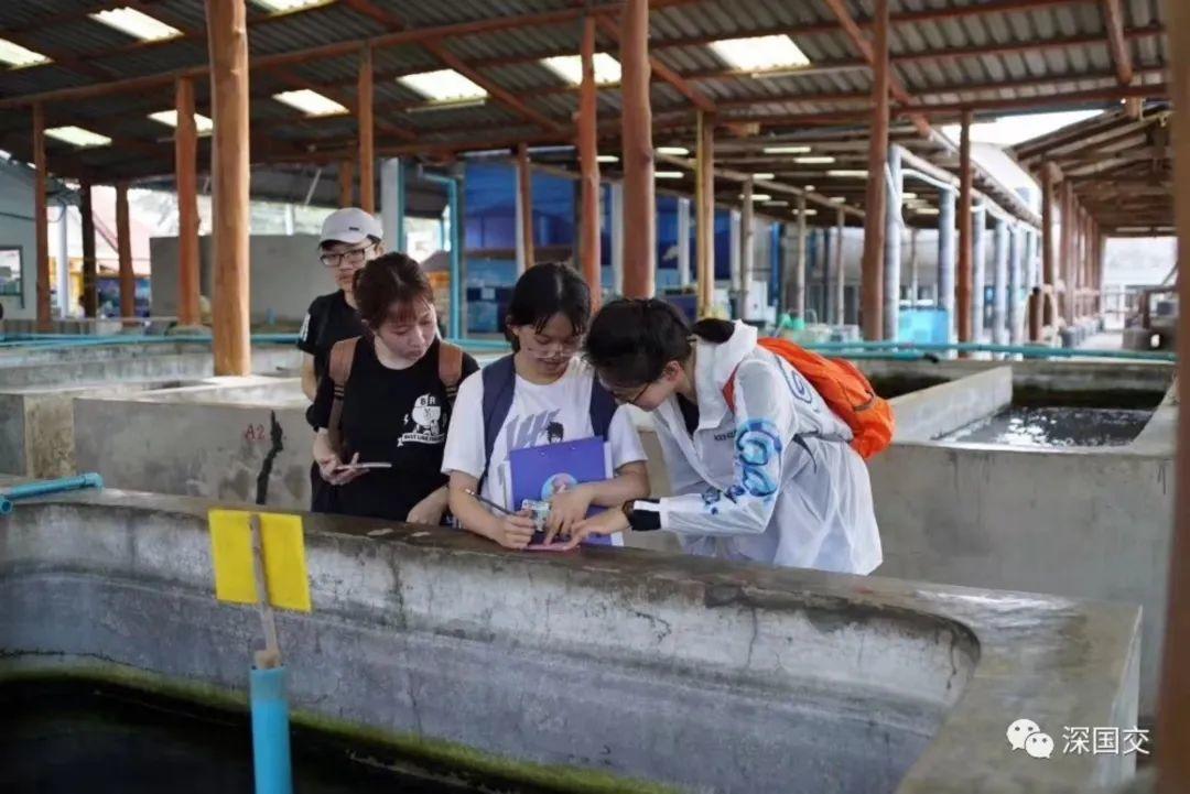 访谈|深国交2020 程珮雯: 一个生物迷的剑桥梦,就这样实现了  深国交 学在国交 深圳国际交流学院 深国交优秀学生 第4张