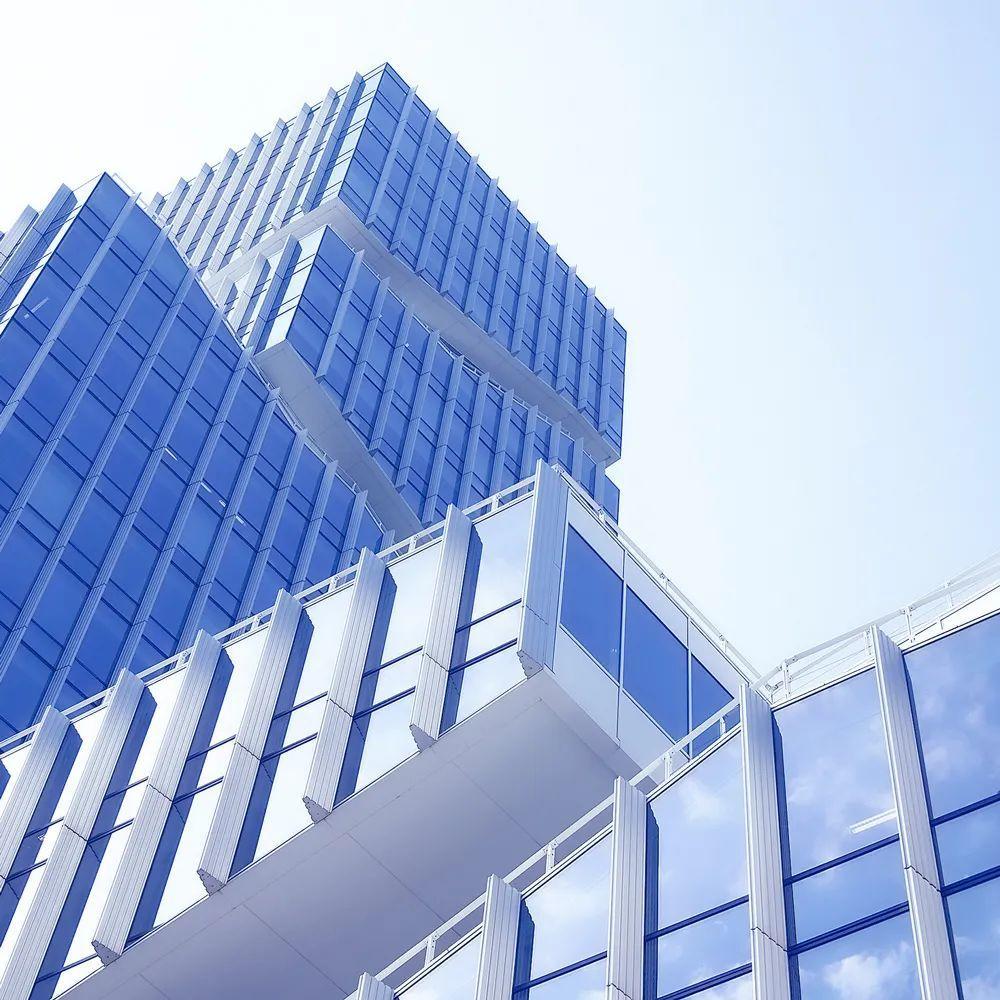 深国交商务实践社 BPC 正在招新 2020新生看过来