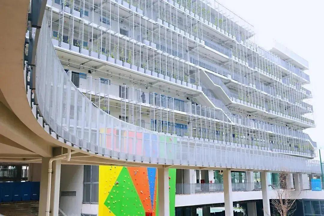 能直升深国交的城市绿洲国际学校最近有什么新变化?
