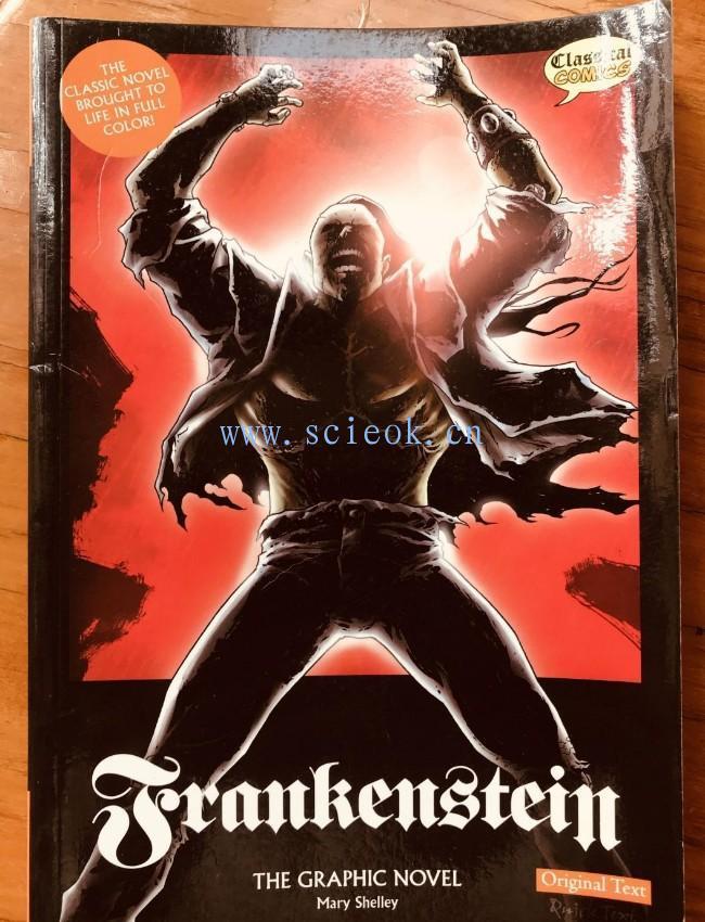 Frankenstein the Graphic Novel: Original Text: US Edition