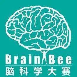 深国交,碧桂园,广外都在参加的赛事 -- Brain Bee脑科学大赛