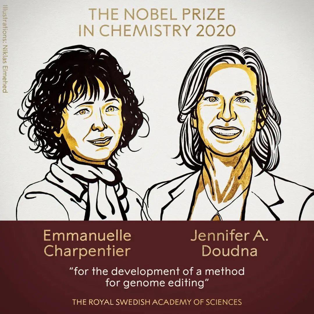 诺贝尔奖获得者扎堆的大学,原来是这样的?