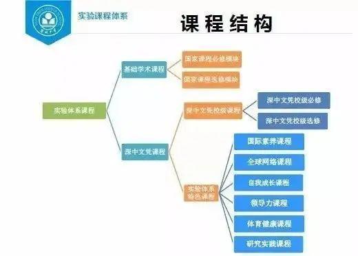 盘点丨深国交VS四大国际体系,家长们会选择哪所学校?  深圳国际交流学院 备考国交 第6张