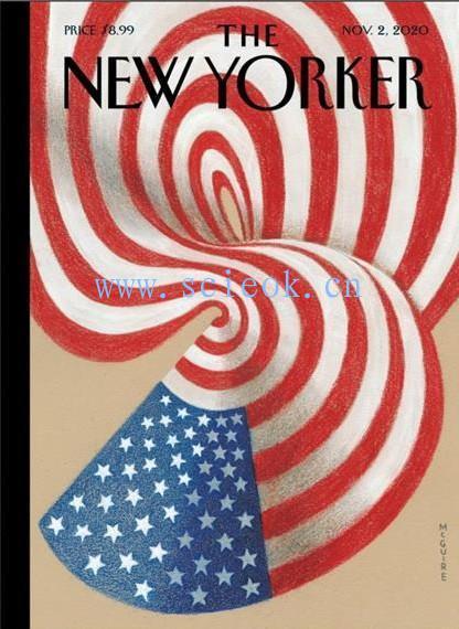 《纽约客》杂志|The New Yorker 电子杂志英文版(2020.11.02)
