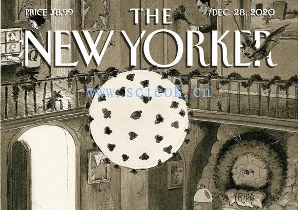 《纽约客》杂志|The New Yorker 电子杂志英文版(2020.12.28)  The Yorker(纽约客) 英文原版杂志 第1张