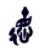 深国交游子筑梦|这个圣诞假,一起来参加湖南油茶小镇公益研学计划吧!  深国交公益社 第5张