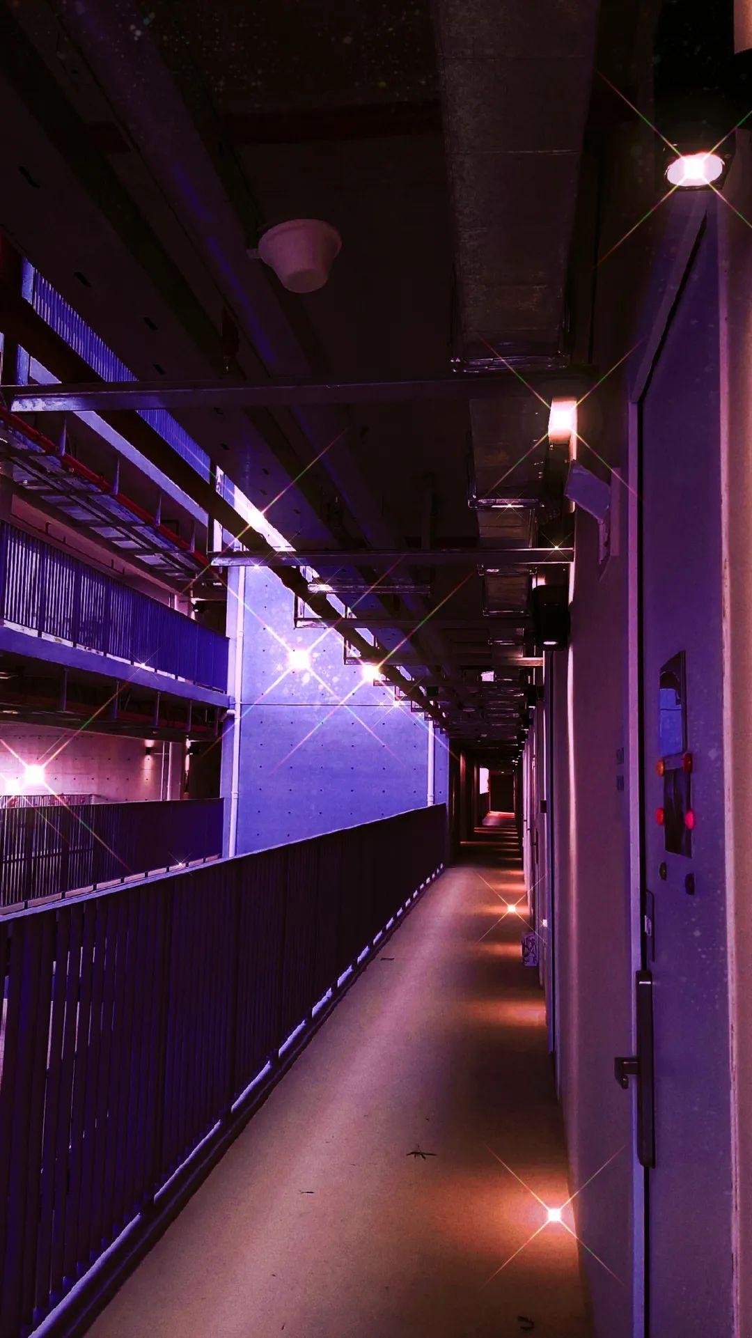 深国交安托山新校园摄影大赛 -- 发现新校园的美(多图)  深国交 深圳国际交流学院 学在国交 第83张