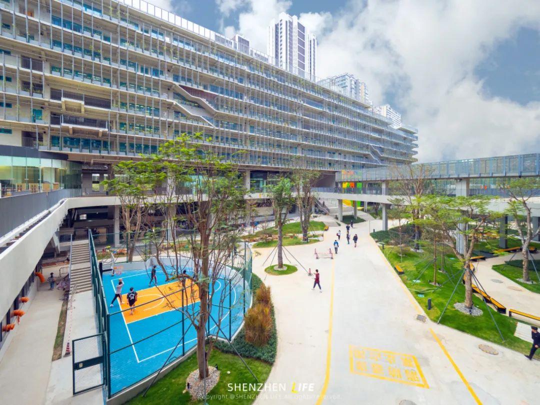 一个传奇 深国交的2021 | 18年风雨 深圳国际交流学院  深国交 第7张