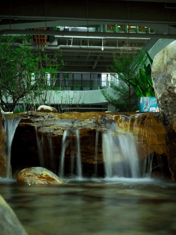 深国交安托山新校园摄影大赛 -- 发现新校园的美(多图)  深国交 深圳国际交流学院 学在国交 第55张