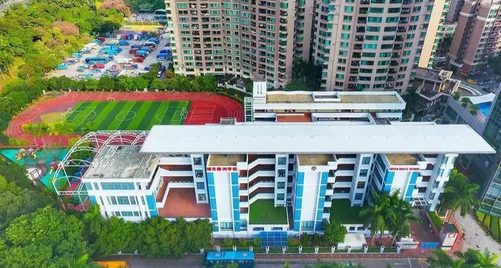 能100%直升深国交的深圳城市绿洲,入学录取比竟低于5%,了解一下  国际学校 城市绿洲 第22张