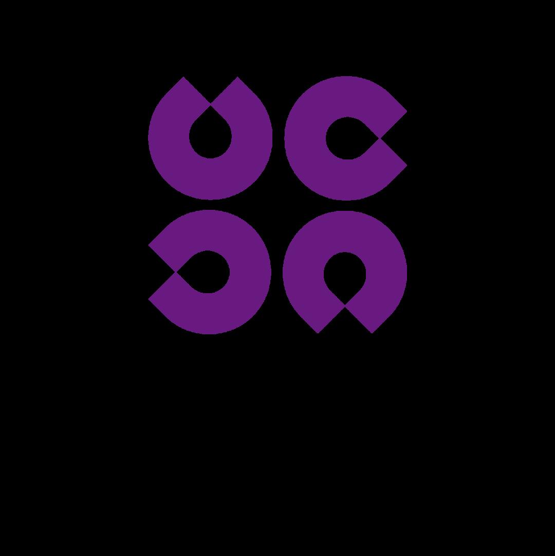 深国交BPC合作项目【志愿者招募正式开启】:2021中英青年菁英峰会  深国交 深圳国际交流学院 深国交商务实践社 第28张