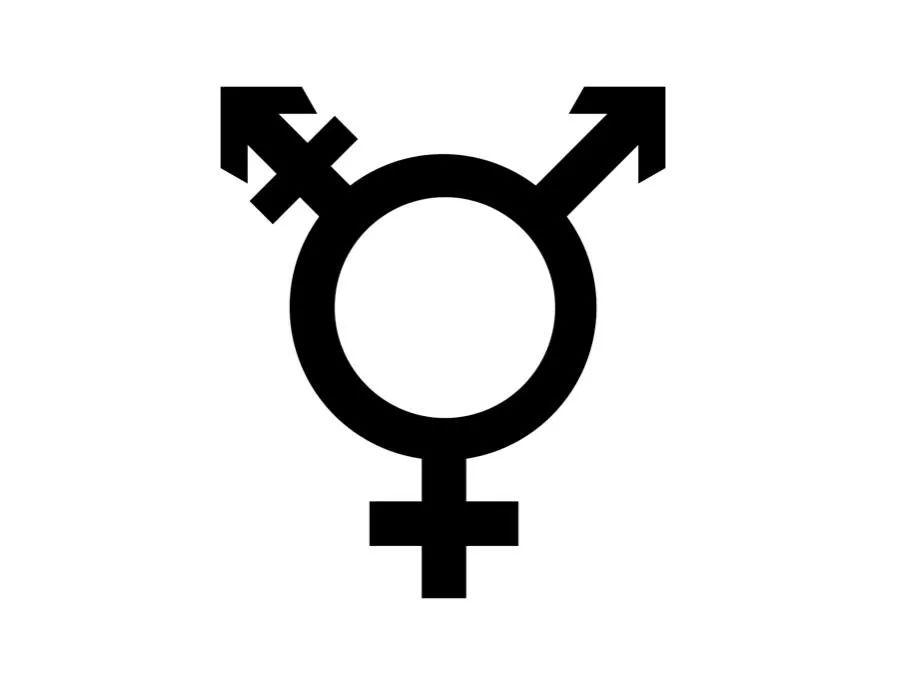 跨性 / 跨性别,一种身体性的成为:重新思考多样而非二分的生物性(上)  哲学 第7张