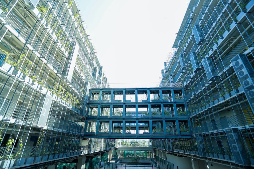 这个问题想想都会毛骨悚然:在深圳读国际化学校,1000万够不够?